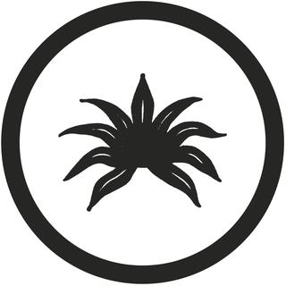 Agavedenim.com