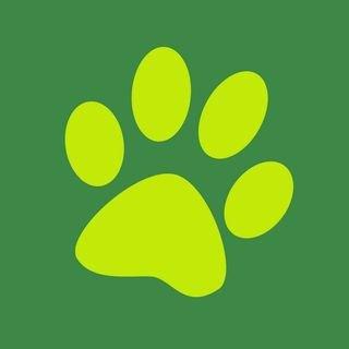 Budgetpetproducts.com.au