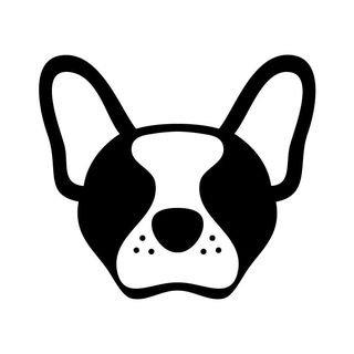 Frog dog co.com