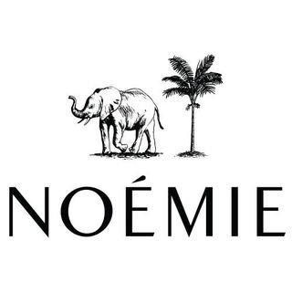 Hellonoemie.com