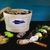 Kelly oysters.com
