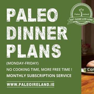 Paleoireland.ie