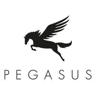 PegasusMenswear.co.uk
