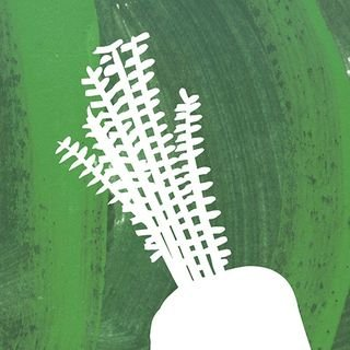 RiverFord.co.uk