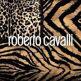 Robertocavalli.com