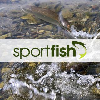 Sportfish.co.uk