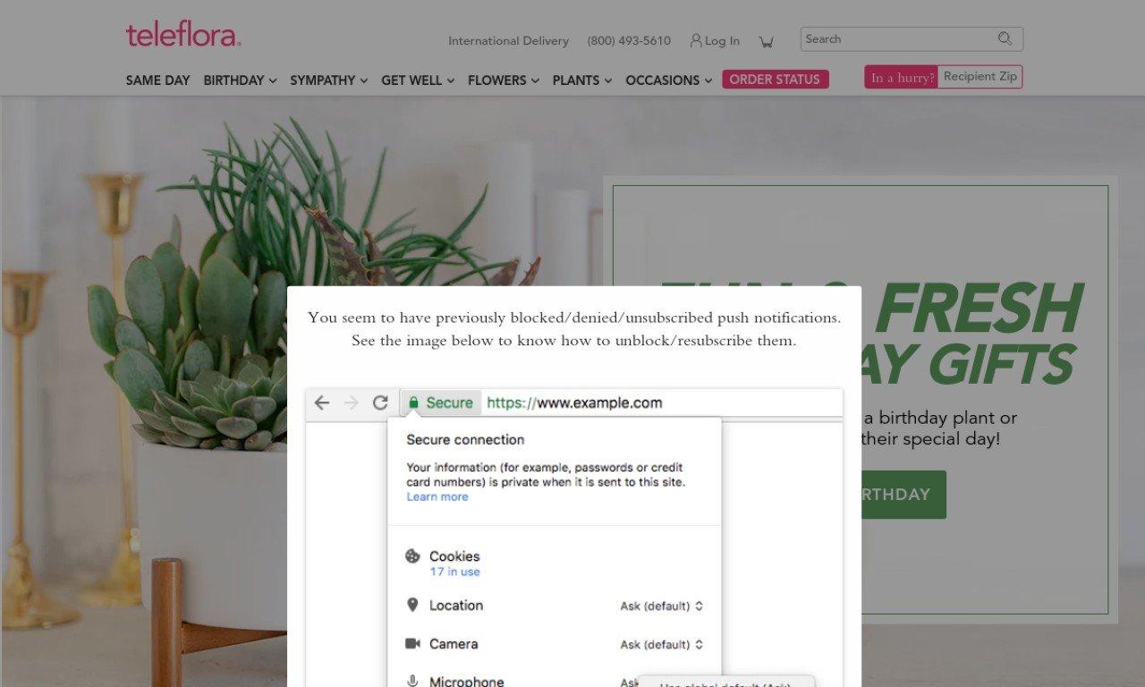Teleflora.com 1