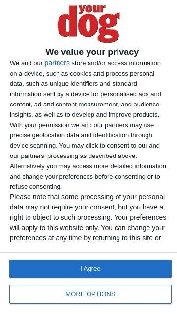 Yourdog.co.uk 2